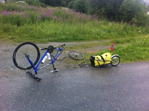 forste-punktering